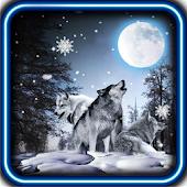 Wolves Winter Night LWP