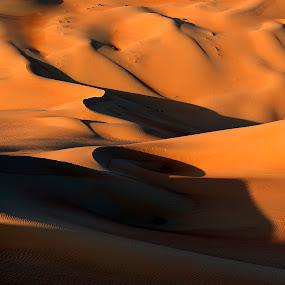 Dunes by Marco Parenti - Landscapes Deserts ( dunes, desert, abu dhabi, landscape )