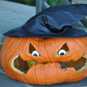 Old Man Pumpkin. Needs love too! by Wendy Schultz - Public Holidays Halloween ( halloween, pumpkin, carved )