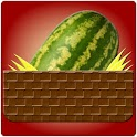 Wacky Watermelon icon
