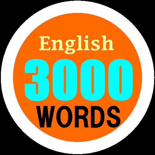 3000 words