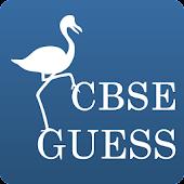 CBSE Guess
