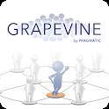 Grapevine by Pragmatic icon