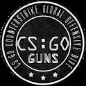 CS Guns Shoot