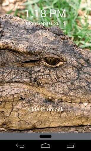愤怒的鳄鱼锁屏