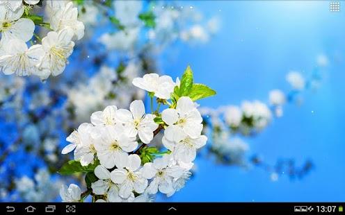 春天動態桌布