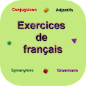 French Exercises icon