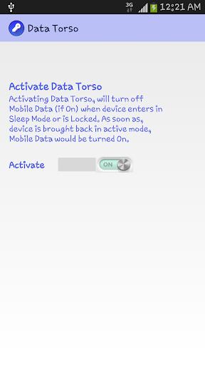 Data Torso