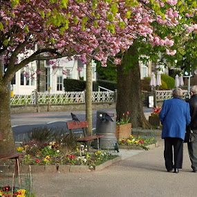 60 years together by Jane Dunne - People Couples ( love, stroll, couple,  )