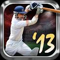 Tap Cricket 2013 icon