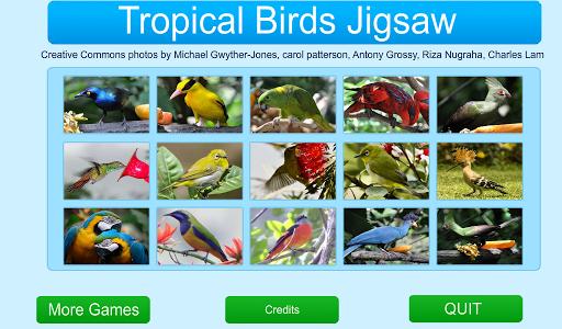 Tropical Birds Jigsaw