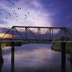 Link by Blue Bell Bantigue - Buildings & Architecture Bridges & Suspended Structures