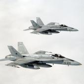 F/A-18 Hornet PRO
