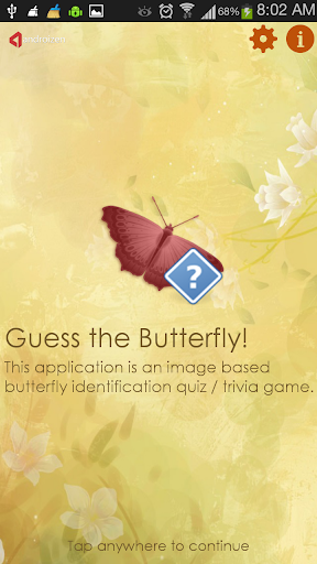 Guess the Butterfly-Photo Quiz