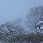 Winter Snowing Live Wallpaper icon