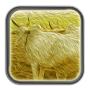 Temptation - Premchand APK icon