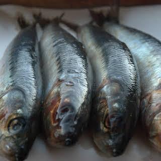 Sardines en Escabeche with Fresh Tarragon.