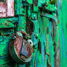 Rusty Padlock by Adele Price - Artistic Objects Other Objects ( shed, green, lock, rust, padlock,  )