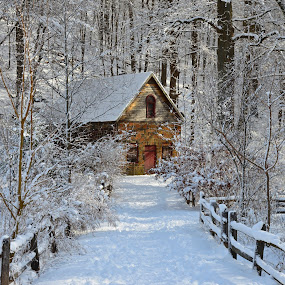 Winter Walk by Carl Testo - City,  Street & Park  City Parks ( eli, fence, building, snow )