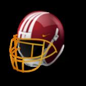 NFL: American football 2014