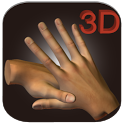 3D Chinese Hand Acupuncture icon