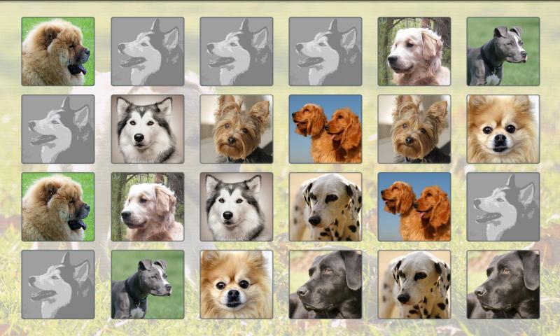 Gratis Hunde Spiele