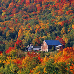by Walter Farnham - Landscapes Mountains & Hills ( fall, color, colorful, nature,  )