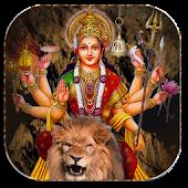 Live Lion of Durga Maa