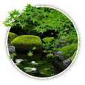 Zen Garden -Summer- LW icon