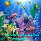Nature Relaxing Sounds icon