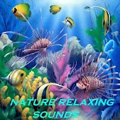 NATURE RELAXING SOUNDS