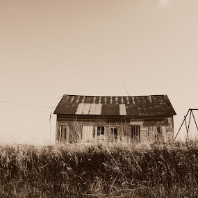 Country Schoolhouse by Amy Eck - Landscapes Prairies, Meadows & Fields
