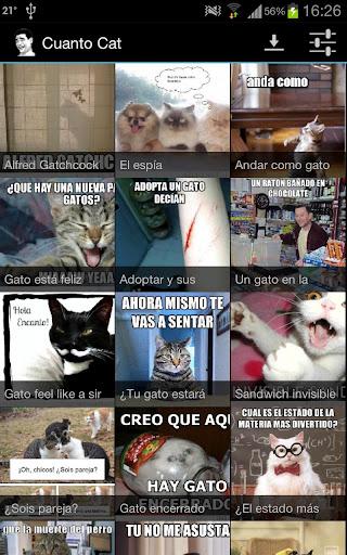 Cuanto Cat