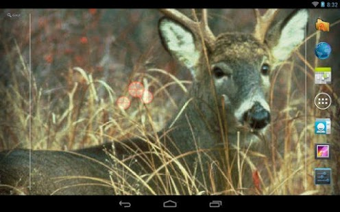 Deer Hunting Live Wallpaper ★ - screenshot thumbnail