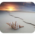 Seashell Photography icon