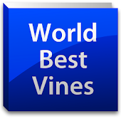 World Best Vines