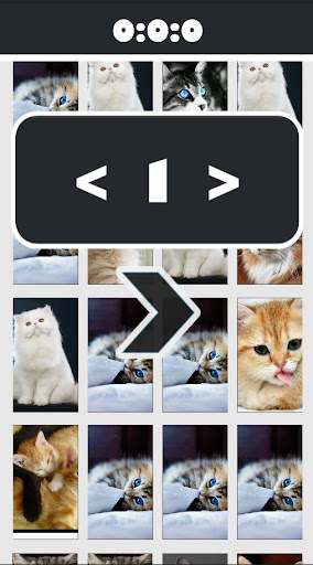 Cat Picture Matching
