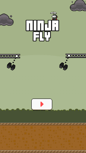 Ninja Fly