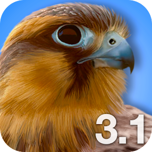 iBird Pro North America icon