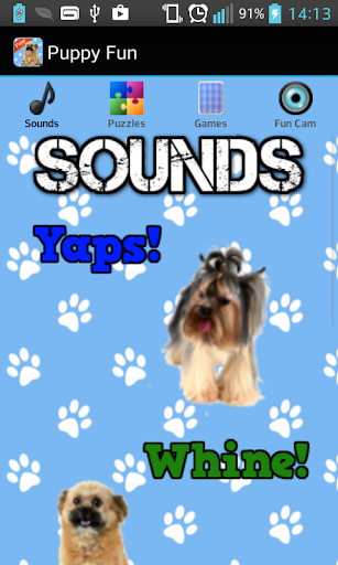 Puppy Games Free for Kids