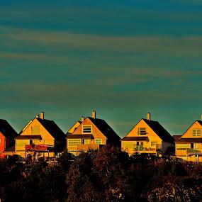 Sunset light by Inna Cleanbergen - Landscapes Sunsets & Sunrises