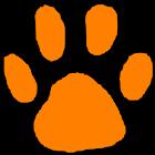 Clemson Football icon