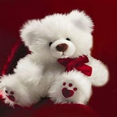 Teddy bears Wallpapers HD