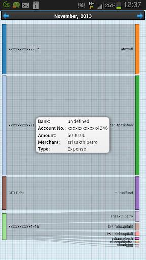 Income Expense Visuals