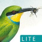 Sasol eBirds (Lite) icon
