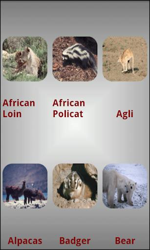 動物信息|玩教育App免費|玩APPs