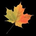 Canada Votes 2011 icon