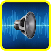 Joke Distorting Voice Recorder