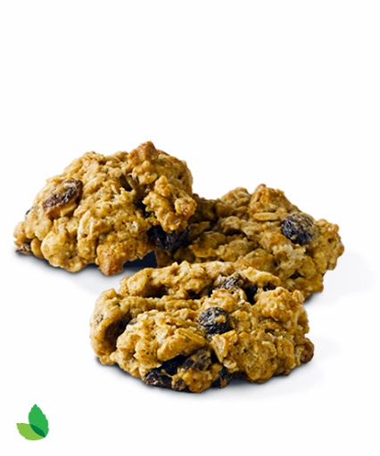Oatmeal cookie recipes made with stevia