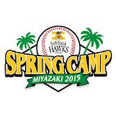 宮崎春季キャンプ2015